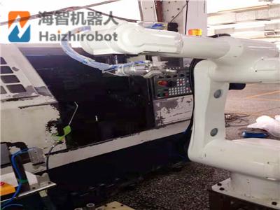 海智机器人有哪些工业机器人机械手产品!(图3)